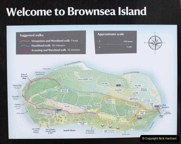 2019-05-26 Brownsea Island visit. (12) 12