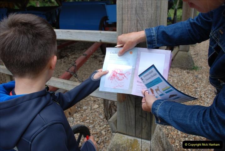 2019-05-26 Brownsea Island visit. (20) Tracing wild animals.20