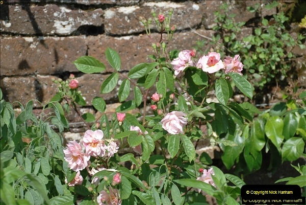 2018-06-01 Cannons Ashby House & Priory.  (78)78