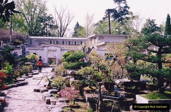 Bonsai Garden in Nanjing.  (1)001