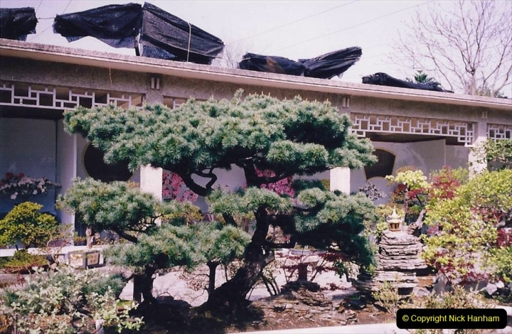 Bonsai Garden in Nanjing.  (2)002