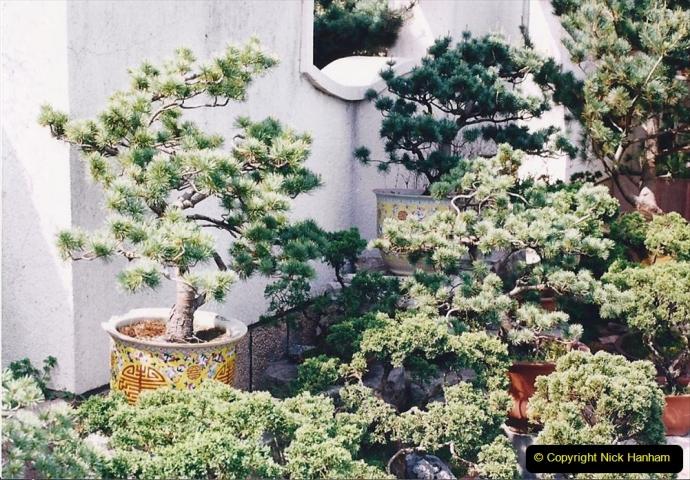 Bonsai Garden in Nanjing.  (4)004