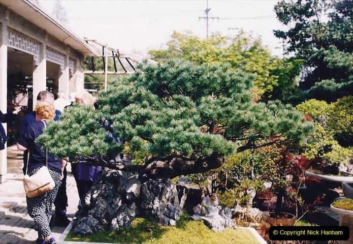 Bonsai Garden in Nanjing.  (5)005