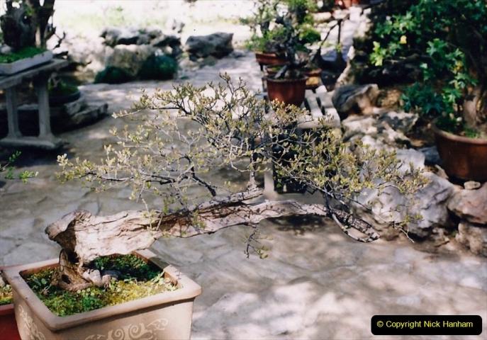 Bonsai Garden in Nanjing.  (6)006