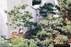 Bonsai Garden in Nanjing.  (4)004