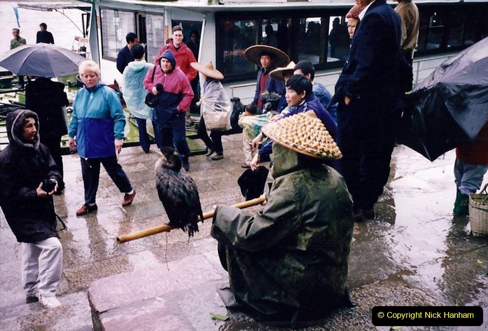 China 1993 April. (108) Yangshuo fisherman with fisinng cormorants.108