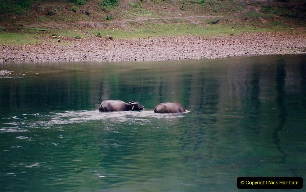 China 1993 April. (81) On the Li or Lijiang River  to Yangshuo. 081