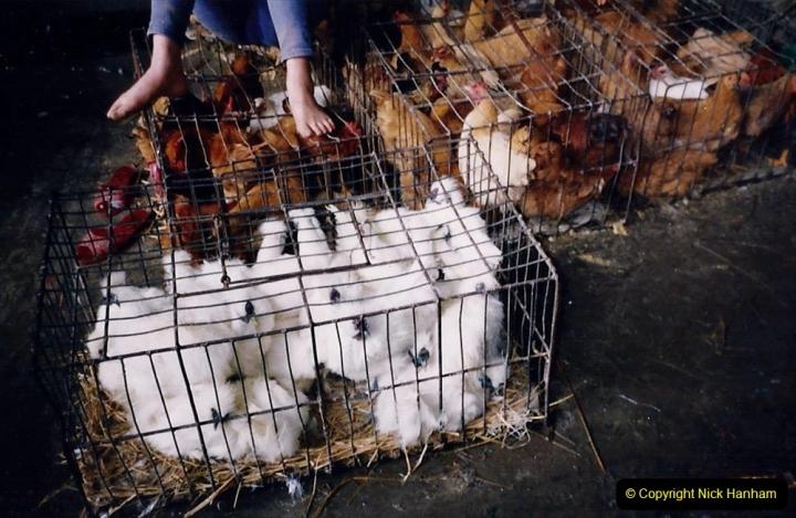 China 1993 April. (163) Guangzhou Market. 163