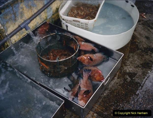 China 1993 April China into Hong Kong. (169) Live fish resturant. 169