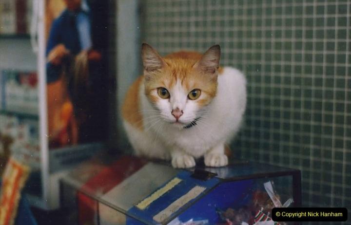 China 1993 April China into Hong Kong. (171) I also like the fish.171