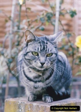 1998 Cleo. (19) 019