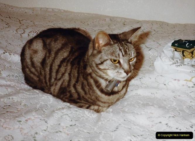 1999 Cleo. (41)041