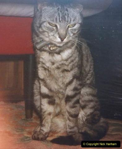 1999 Cleo. (46) 046