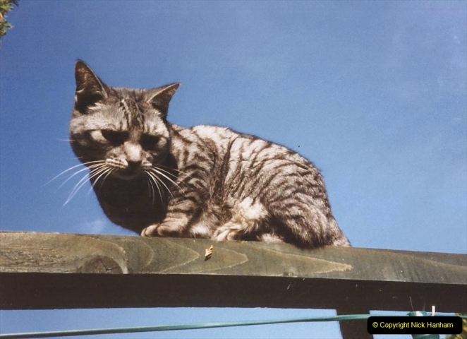 1999 Cleo. (49) 049