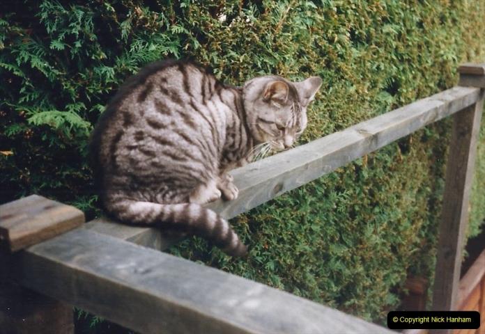 1999 Cleo. (50) 050