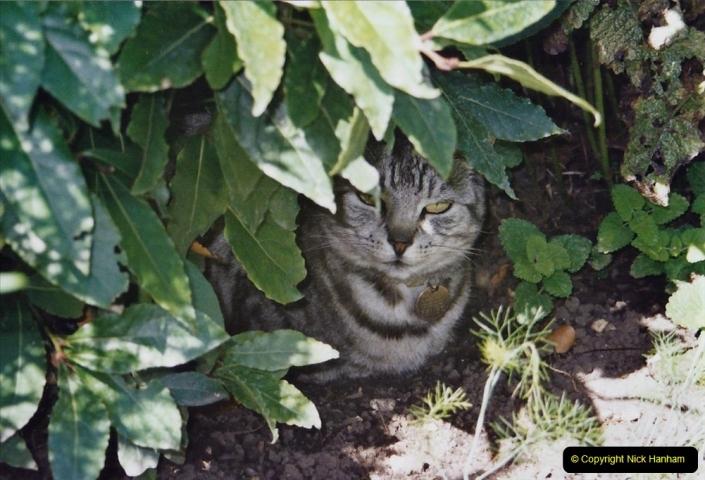 2001 Cleo. (73)073