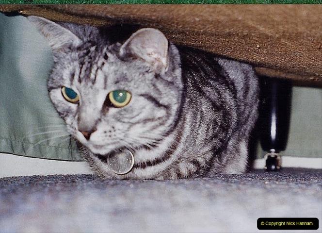 2001 Cleo. (76) 076