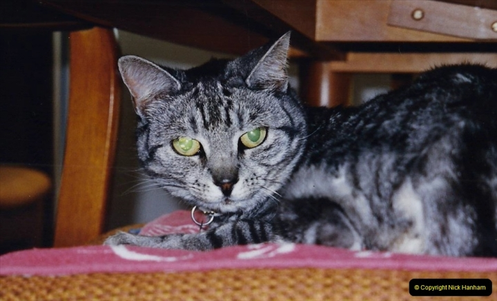 2002 Cleo. (89) I have a dislocated hip.089