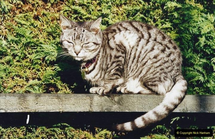 2002 Cleo. (91) 091