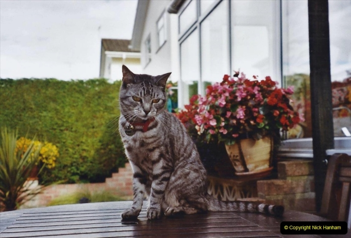 2003 Cleo. (100) 100