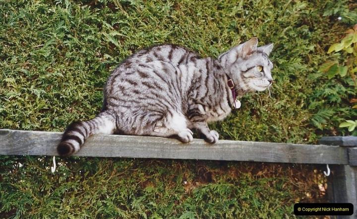 2003 Cleo. (94) 094