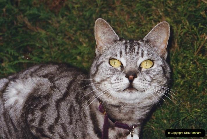 2003 Cleo. (95) 095
