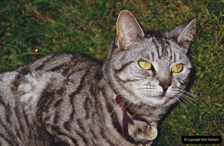 2003 Cleo. (96) 096