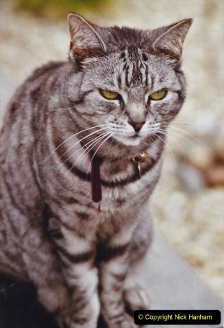 2003 Cleo. (97) 097