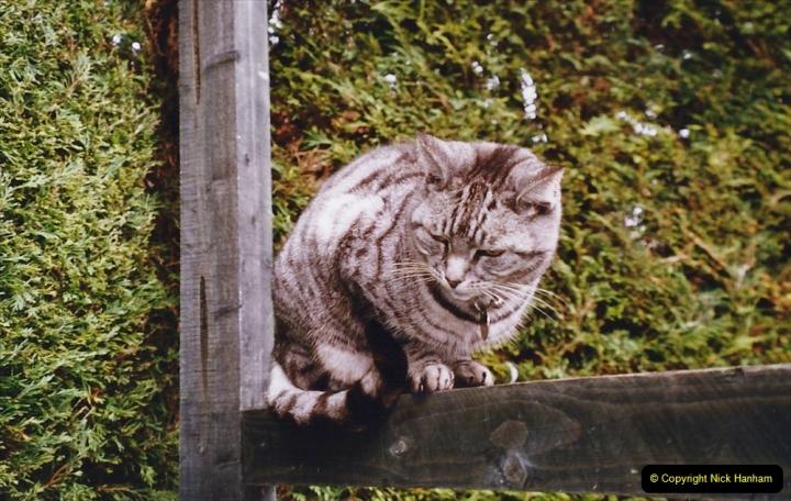 2004 Cleo. (118)118