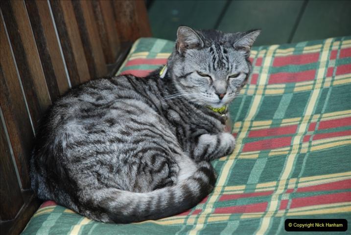 2005 to 2010 Cleo. (159) 159