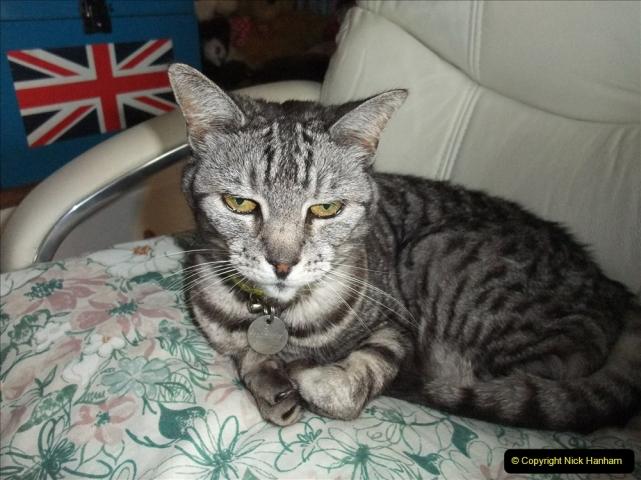 2005 to 2010 Cleo. (168) 168