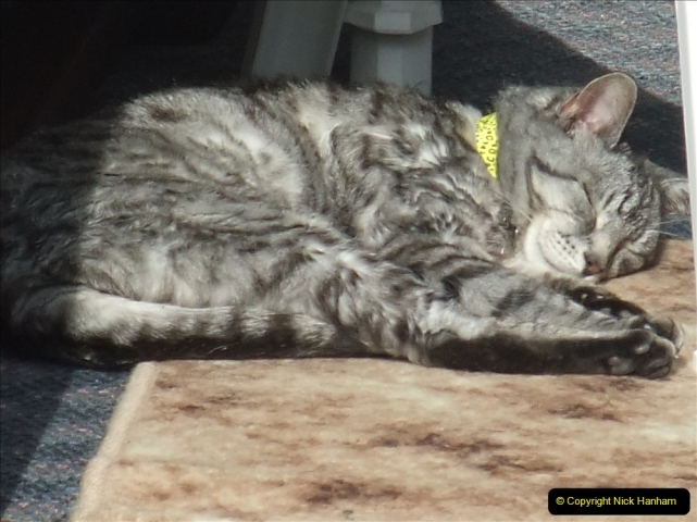 2005 to 2010 Cleo. (178) 178