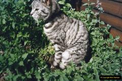 1999 Cleo. (44) 044