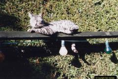 1999 Cleo. (51) 051
