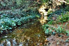 2019-12-02 Poole, Dorset. (45) Compton Acres. 045