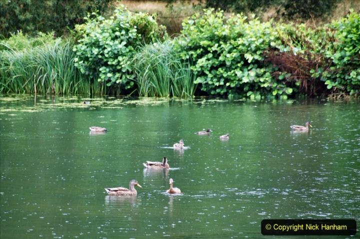 2020-08-19 Covid 19 Visit The Vyne (NT) near Basingstoke, Hampshire. (27)  027