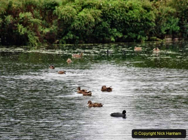 2020-08-19 Covid 19 Visit The Vyne (NT) near Basingstoke, Hampshire. (28)  028