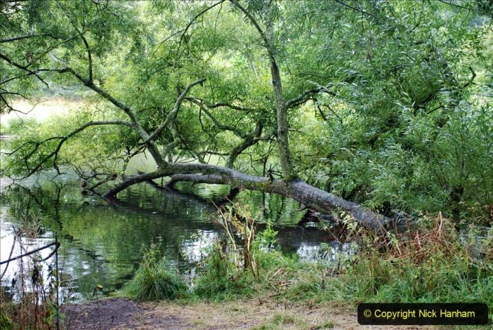 2020-08-19 Covid 19 Visit The Vyne (NT) near Basingstoke, Hampshire. (31)  031