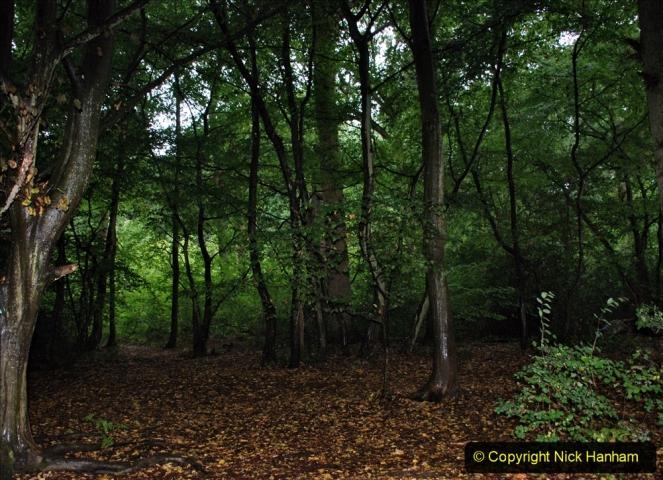 2020-08-19 Covid 19 Visit The Vyne (NT) near Basingstoke, Hampshire. (35)  035