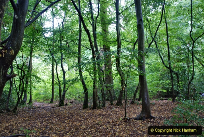 2020-08-19 Covid 19 Visit The Vyne (NT) near Basingstoke, Hampshire. (36)  036