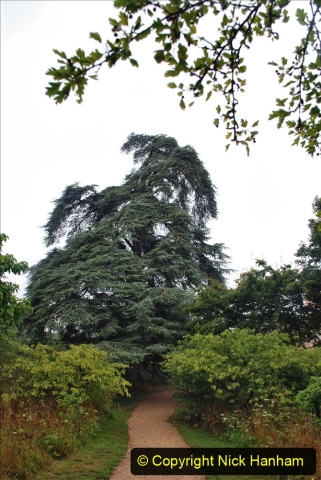 2020-08-19 Covid 19 Visit The Vyne (NT) near Basingstoke, Hampshire. (48)  048