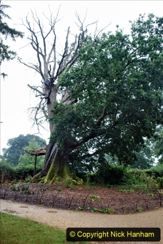 2020-08-19 Covid 19 Visit The Vyne (NT) near Basingstoke, Hampshire. (70)  070