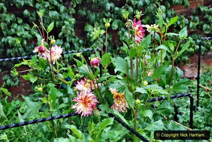 2020-08-19 Covid 19 Visit The Vyne (NT) near Basingstoke, Hampshire. (74)  074