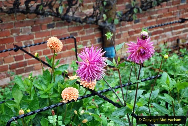 2020-08-19 Covid 19 Visit The Vyne (NT) near Basingstoke, Hampshire. (77)  077