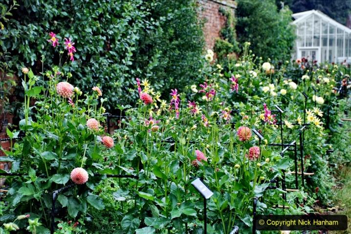 2020-08-19 Covid 19 Visit The Vyne (NT) near Basingstoke, Hampshire. (88)  088