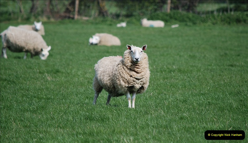2019-04-14 to 15 Dorchester-on-Thames, Oxfordshire. (134) A walk near Dorchester and the River Thames. 137134