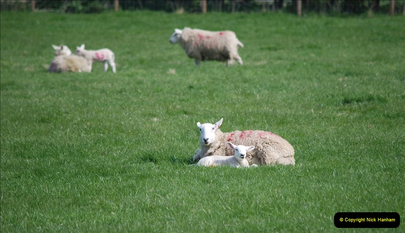 2019-04-14 to 15 Dorchester-on-Thames, Oxfordshire. (141) A walk near Dorchester and the River Thames. 144141