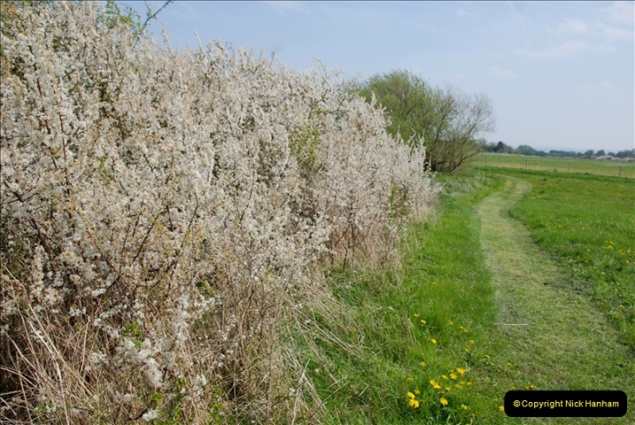 2019-04-14 to 15 Dorchester-on-Thames, Oxfordshire. (167) A walk near Dorchester and the River Thames. 170167