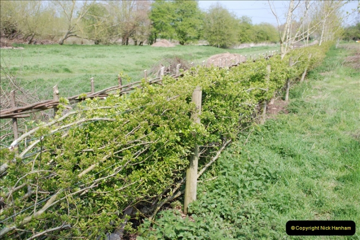 2019-04-14 to 15 Dorchester-on-Thames, Oxfordshire. (172) A walk near Dorchester and the River Thames. 175172