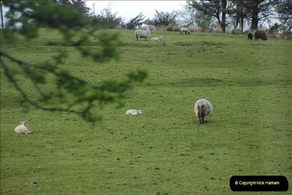 2013-05-28 Killybegs, Eire.  (132)0539